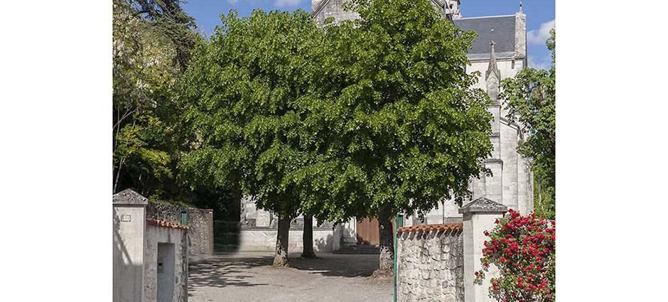 47000 - Agen - Lycée d'Enseignement Agricole Privé l'Ermitage