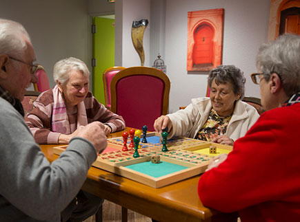 Etablissement d'Hébergement pour Personnes Agées Dépendantes - 31830 - Plaisance-du-Touch - Résidence Edenis Le Prat
