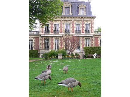 Etablissement d'Hébergement pour Personnes Agées Dépendantes - 78290 - Croissy-sur-Seine - Résidence La Roseraie  EHPAD Résidence avec Services