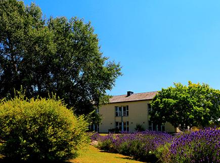 Foyer d'Hébergement - 7120 - Estinnes - La Pilerie