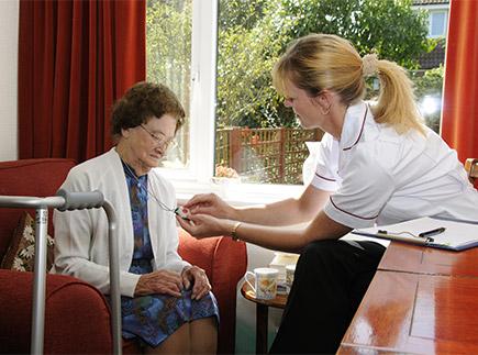 Services d'Aide et de Maintien à Domicile - 31340 - Villemur-sur-Tarn - ACEF Association Cantonale d'Emplois Familiaux